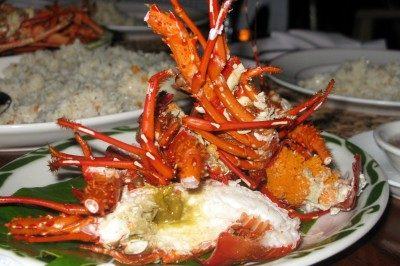 lobster in the Philippines
