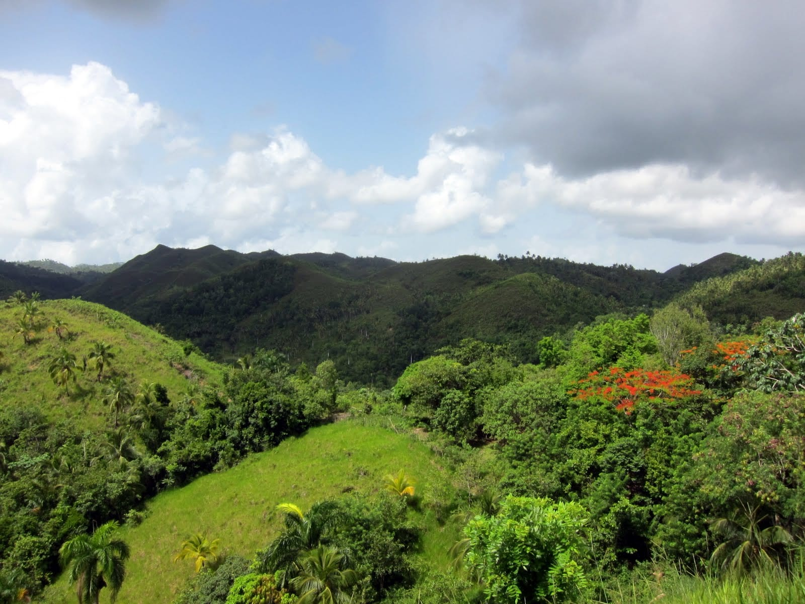Rolling hills near Samana, on the way to El Limon