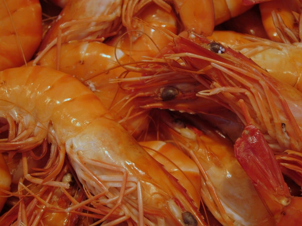 Shrimp in Paris' Convention market.