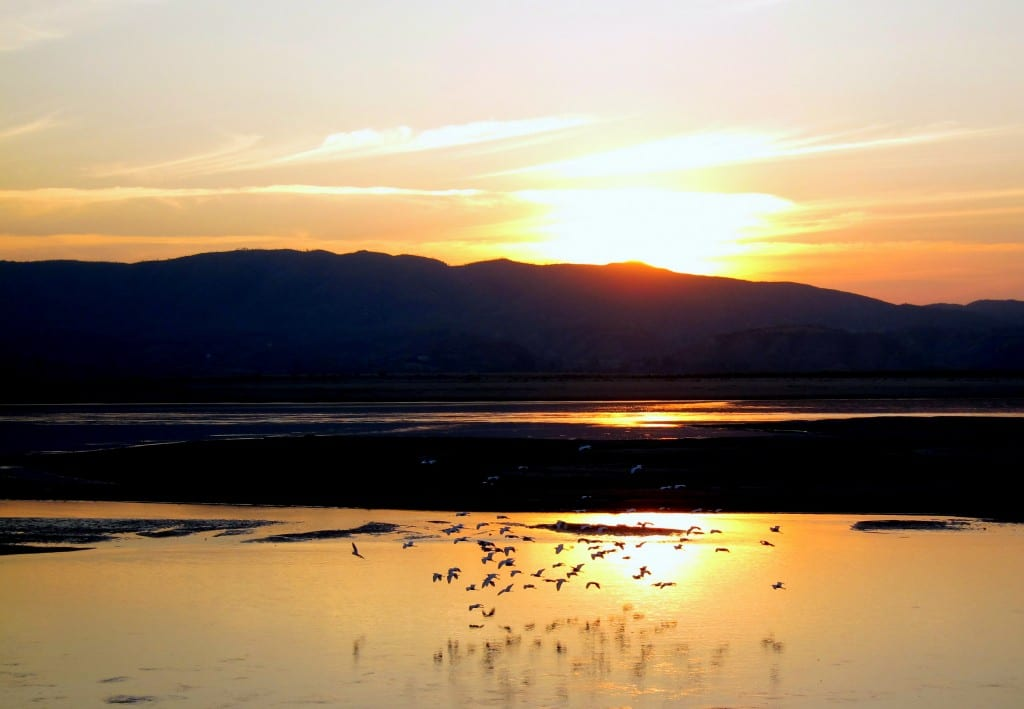 Sunset and birds over the ayeyarwaddy river in Burma