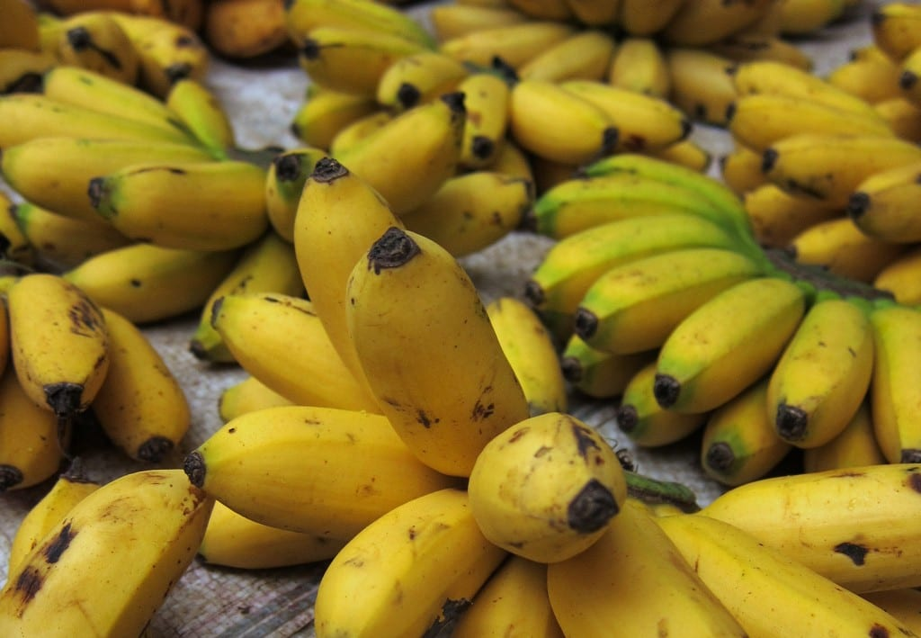Banana deliciousness in Laos
