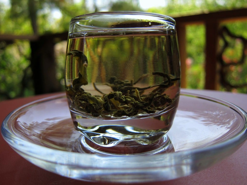 Tea from Coffee Camp near Mae Hong Son