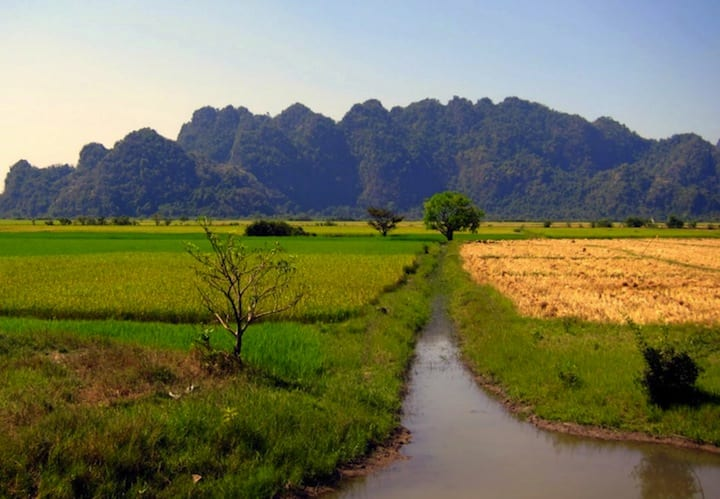 Rice fields and karst cliffs in Myanmar