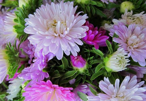 Inle Lake Burma- morning market flowers