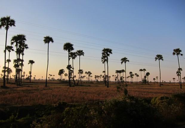 Dusk from the Mandalay to Myitkyina train