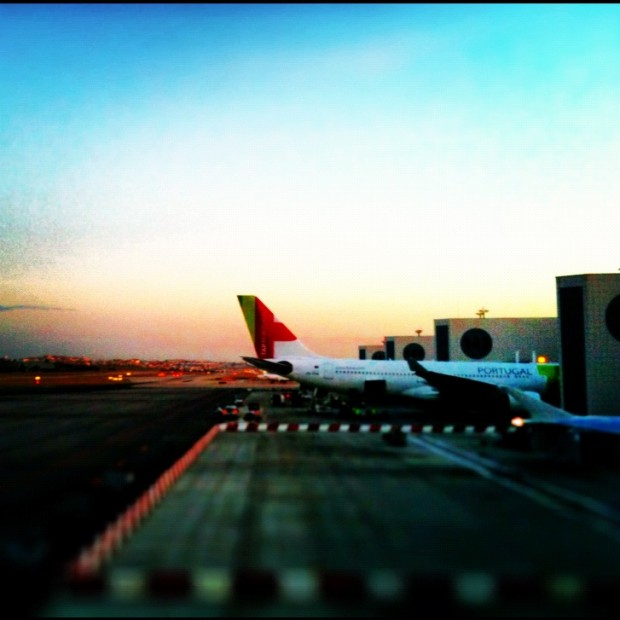 TAP planes at dawn in Lisbon