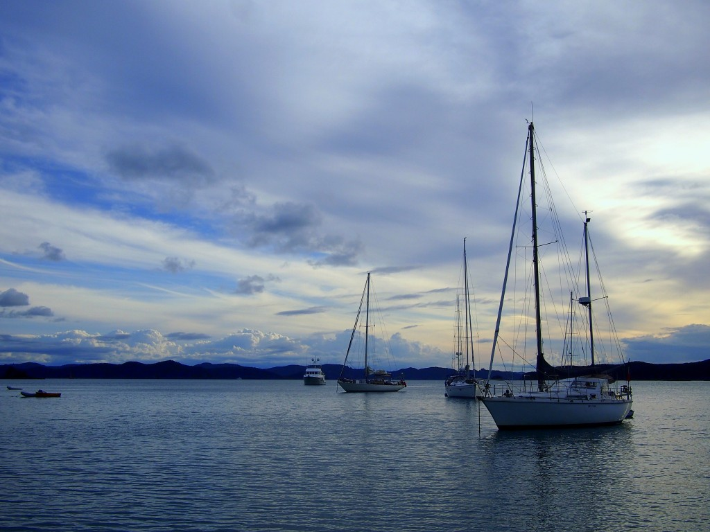 sailing course new zealand