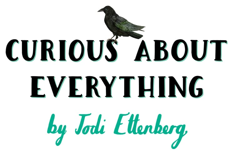 curious about everything a newsletter by jodi ettenberg