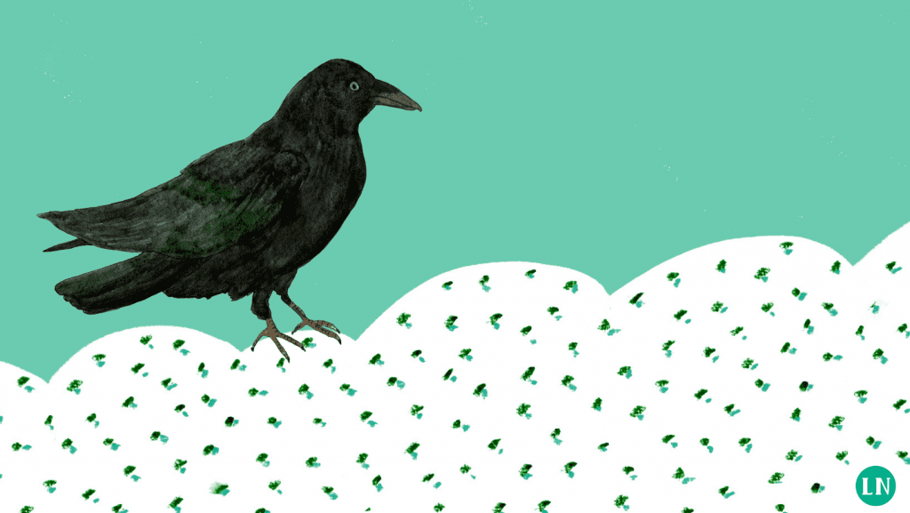 arthur the raven legal nomads